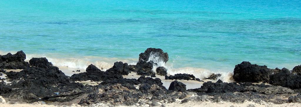 Kanarische Inseln - 5 Urlaubsziele auf den Kanaren